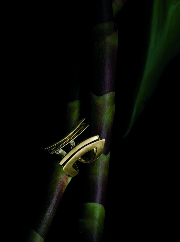 Grafismo - Anel de ouro amarelo  - grafismo anel de ouro amarelo - BRILHO NATURAL