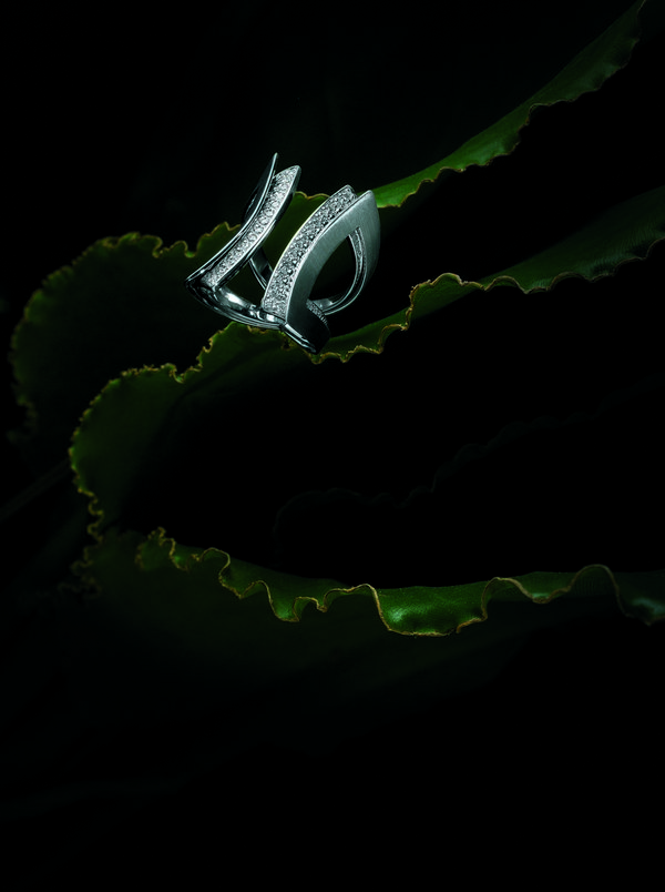 Grafismo - Anel de ouro branco com diamantes  - grafismo anel de ouro branco com diamantes - BRILHO NATURAL
