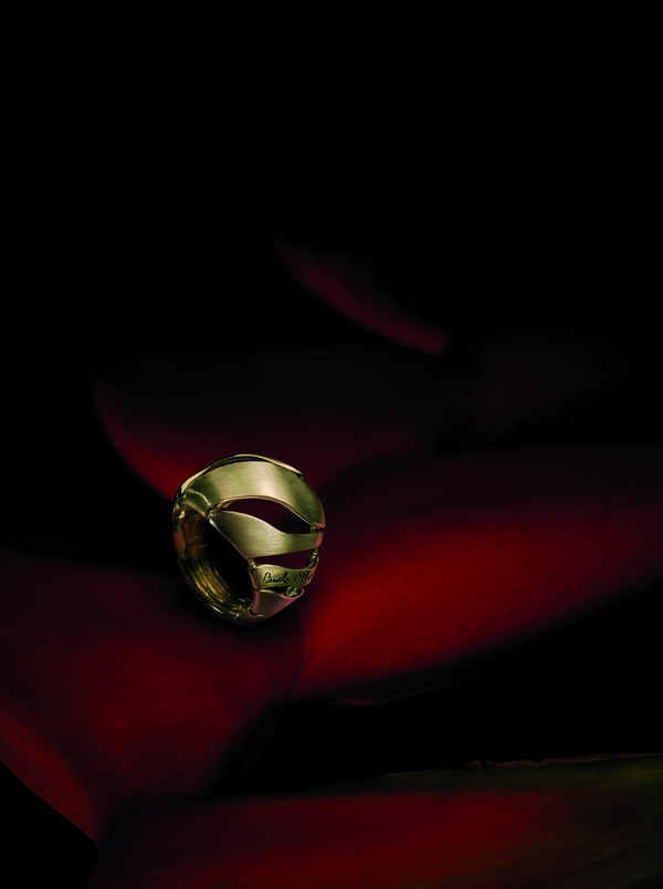 Pedra do Fogo - Anel Maleável  - pedra do fogo anel malec3a1vel - BRILHO NATURAL